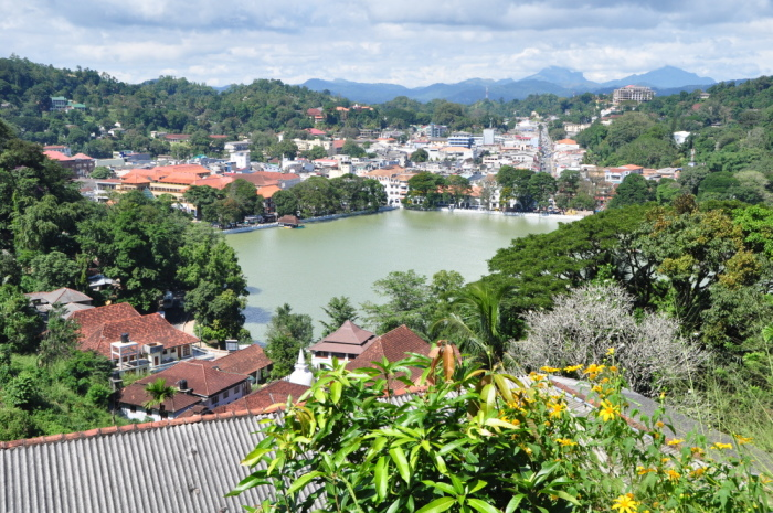Kandy Milchsee