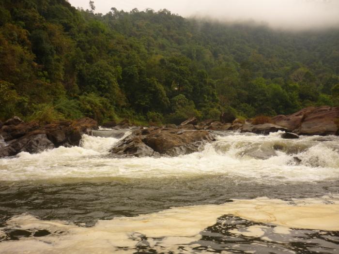 Rafting Kithulgala