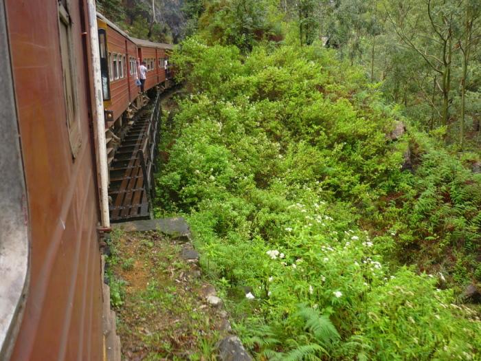 Zugfahrt Hochland