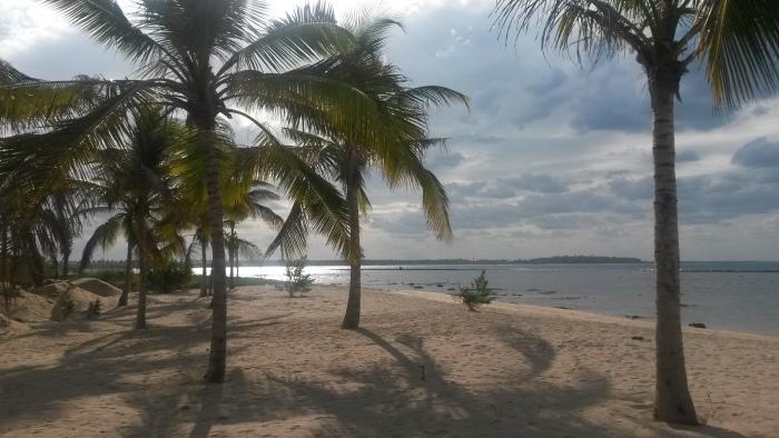 Palmen Strand Pasikuda
