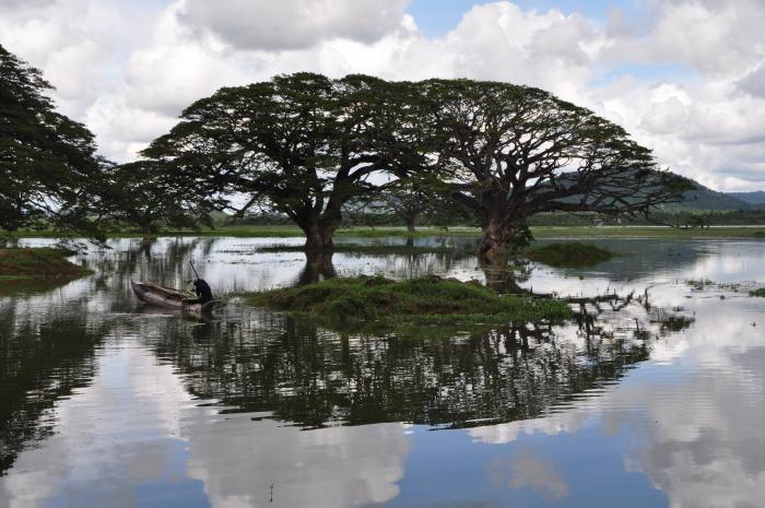 Spiegelung See Habarana