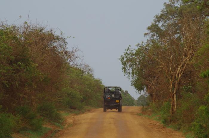 Jeep im Yala Nationalpark