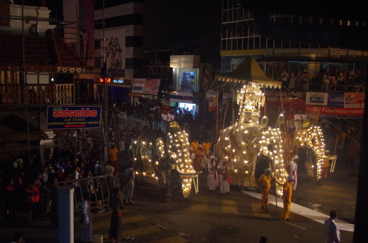 Prozession Kandy Elefanten