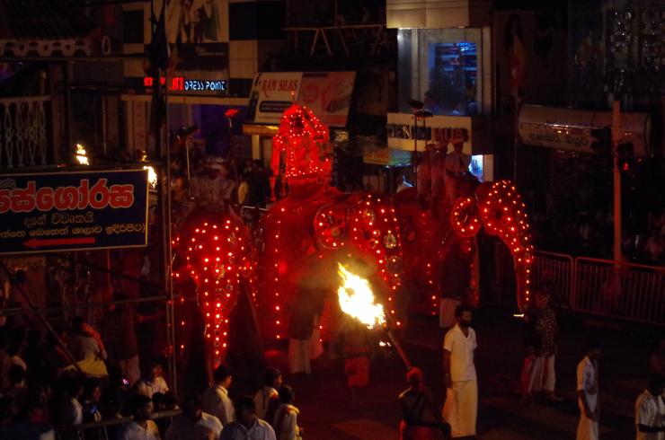 Elefanten Kandy Prozession